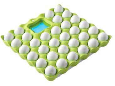 Waage Eggs