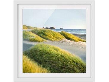 Gerahmtes Papierbild Dünen und Gräser am Meer