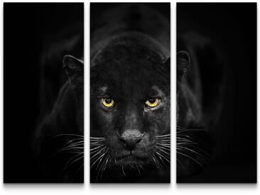 3-tlg.Leinwandbilder-SetSchwarzer Panther