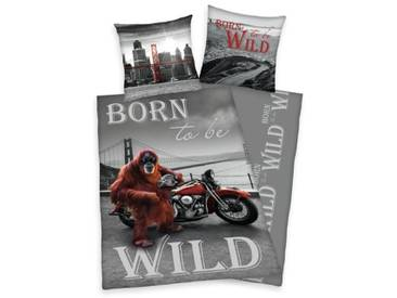 Renforcé-Wendebettwäsche Young Collection Born to be wild