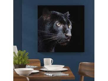 Leinwandbild Schwarzer Panther auf schwarzem Hintergrund – Nahaufnahme