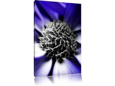 Leinwandbild Elegante Magarete schwarz/weiß
