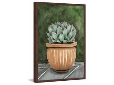 Gerahmtes Papierbild Cactus on the Patio von Glenda Roberson