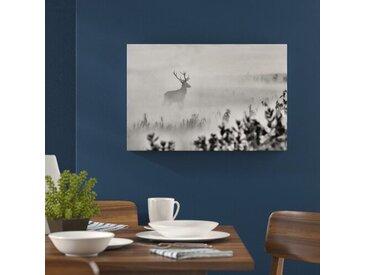 Leinwandbild Hirsch im Nebel in Monochrom
