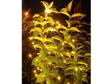 LED-Lichterkette 80-flammig Chartreuse in Warmweiß