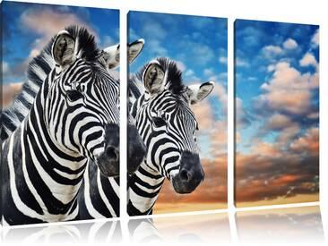 "3-tlg. Leinwandbilder-Set ""Zebra Pärchen"", Fotodruck"