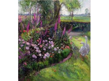 Gerahmtes Wandbild Rose Bed and Geese,1992 von Timothy Easton