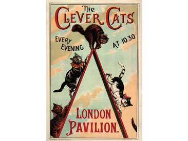Gerahmte Retro-Werbung The Clever Cats