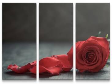 3-tlg.Leinwandbilder-SetRose und Blütenblätter auf Tisch