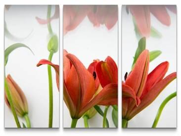 3-tlg.Leinwandbilder-SetRote asiatische Lilien