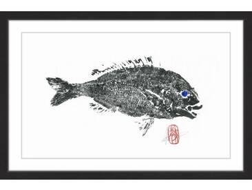 Gerahmtes Papierbild Sea Perch von Andrew Clay
