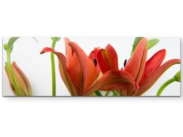 LeinwandbildRote asiatische Lilien