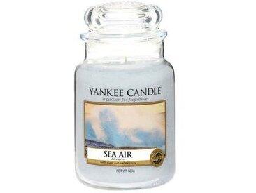 Yankee Candle Duftkerze Sea Air