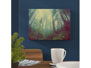 Leinwandbild Wald im Nebel, Fotodruck