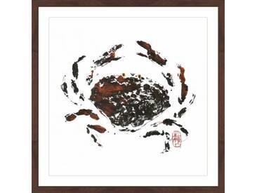 Gerahmtes Papierbild Hidden Crab von Andrew Clay