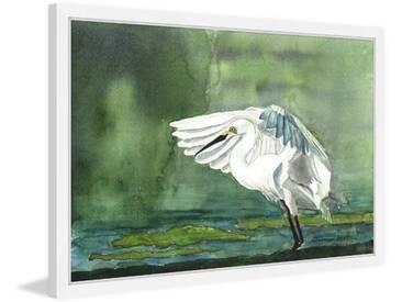 Gerahmtes Papierbild Egret on the Pond von Glenda Roberson