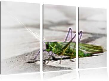"3-tlg. Leinwandbilder-Set ""Elegante Heuschrecke"", Grafikdruck"
