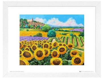 Gerahmtes Poster Vineyards and Sunflowers von Jean-Marc Janiaczyk