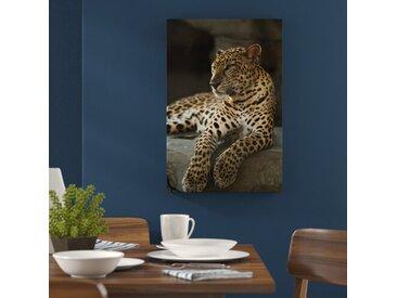 """Leinwandbild """"Majestätischer Leopard"""", Fotodruck"""