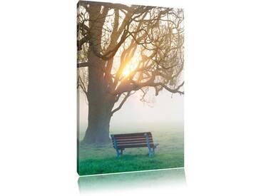 Leinwandbild Baum und Bank im Nebel, Fotodruck