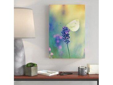 Leinwandbild Kleiner Schmetterling auf Lavendel