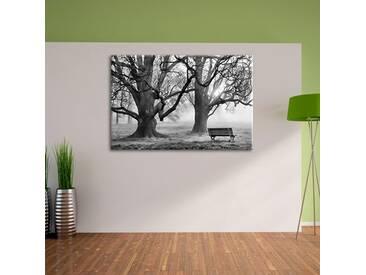 Leinwandbild Baum und Bank im Nebel in Monochrom