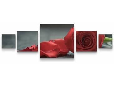 5-tlg.Leinwandbilder-SetRose und Blütenblätter auf Tisch