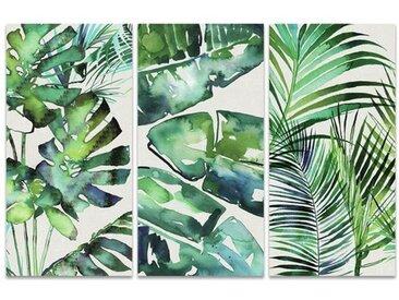3-tlg. Leinwandbilder-Set Botanical Series von Summer Thornton