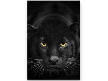 Leinwandbild Schwarzer Panther