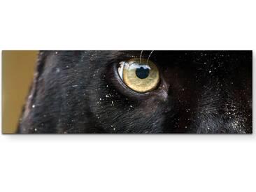 Leinwandbild Panther Auge – Nahaufnahme