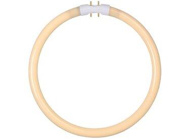 Leuchtstoffröhre T5