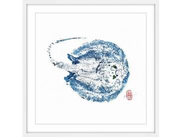 Gerahmtes Papierbild Stingray Blue von Andrew Clay