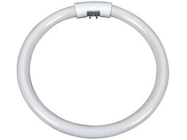 Leuchtstoffröhre G10q T5 22W