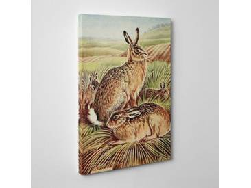 "Leinwandbild ""Vintage Hares and Leverets von Charles Francis Newall, Kunstdruck"