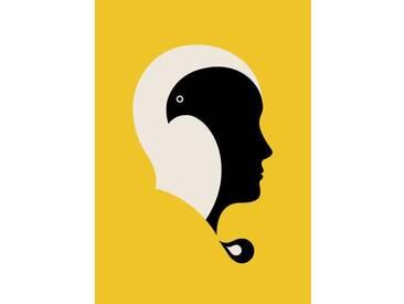 Gerahmte, grafische Kunst Eagle von Paul Tebbot