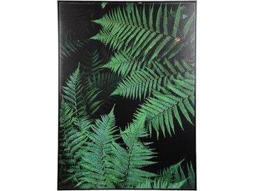 XL-Leinwandbild Farn, 101x139x4cm, dunkelgrün