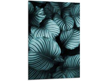 Acrylglasbild Green Leaves, B:40cm x L:60cm, grün