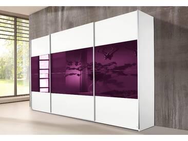 PACK´S Schwebetürenschrank »Quadra« lila, Breite 315 cm, Höhe 210cm, rauch