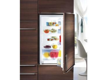 GORENJE Einbaukühlschrank, 87,5 cm hoch, 54 cm breit, Energieeffizienz: A+ weiß, Energieeffizienzklasse: A+