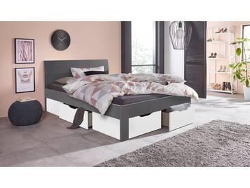 PACK´S Möbelwerke Stauraumbett , grau, 140x200cm, »Flexx«, mit Schubkästen, rauch
