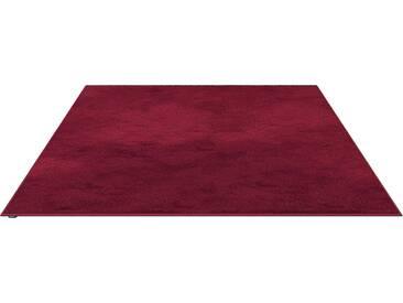 Object Carpet - RUGX SILKY SEAL 1200 Teppich - 1203 rosenrot - 250 x 250 cm