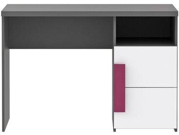 Schreibtisch LIBELLE Jugendschreibtisch in Grau / Weiß / Violett
