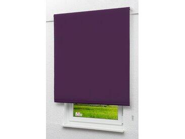 Seitenzugrollo Lysel Outlet - Verdunkelungsrollo Purpurviolett, (B x H) 152.50cm x 190cm in violett/purpurviolett