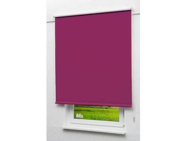 Seitenzugrollo Lysel Outlet - Verdunkelungsrollo Dunkelmagenta, (B x H) 82.50cm x 190cm in violett/dunkelmagenta