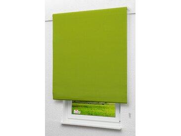 Seitenzugrollo Lysel Outlet - Verdunkelungsrollo Gelbgrün, (B x H) 122.50cm x 190cm in grün/gelbgrün