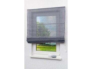 LYSEL Outlet Raffrollo grau, transparent mit Schnurzug, Maße: (B x H) 60cm * 170cm