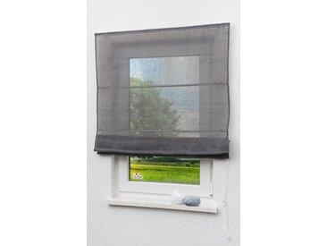 LYSEL Outlet Raffrollo grau, transparent mit Schnurzug (B x H) 120cm * 170cm