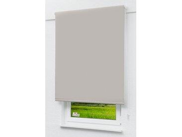 Seitenzugrollo Lysel Outlet - Verdunkelungsrollo Graubeige, (B x H) 62.50cm x 190cm in beige/graubeige