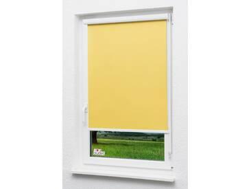 Seitenzugrollo Lysel Outlet - Kassettenrollo abdunkelnd Zinkgelb, (B x H) 120cm x 175cm in gelb/Zinkgelb