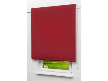 Seitenzugrollo Lysel Outlet - Basisrollo Tageslicht Bordeauxrot, (B x H) 82.50cm x 190cm in rot/bordeauxrot